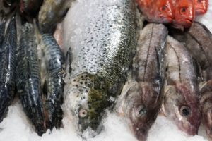 Tusze rybne mrożone